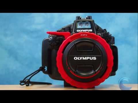 Olympus PT-EP14 Underwater Housing for Olympus OM-D E-M1 Mark II Camera Review by Bluewater Photo