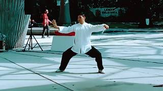 Chen Tai Chi demonstration by Master David Bao
