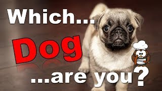 ✔ Which Dog Are You? - Personality Test