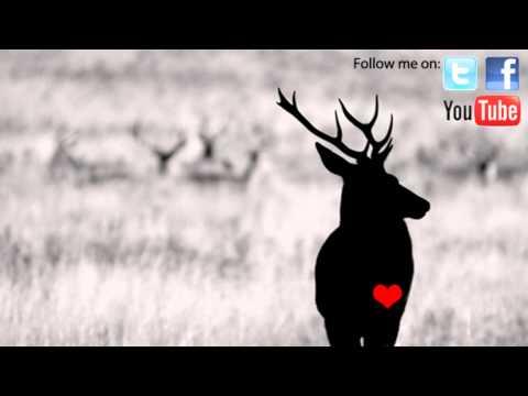 Noah D - Seeerious (50 Carrot Remix)