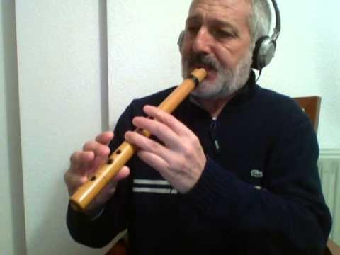 Lugia's song (Pokemon 2000) - Quena flute