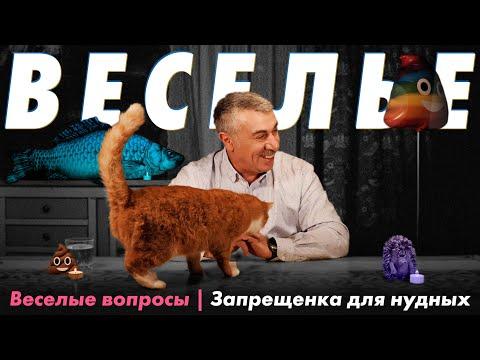 Веселые вопросы 8 | Запрещенка для нудных | Доктор Комаровский
