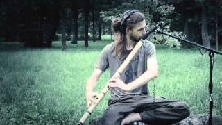 Nevsky Sun - The Snail Sound