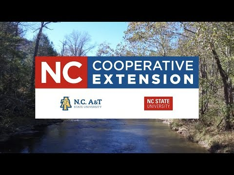 Cover photo for N.C. Cooperative Extension | Service Vision