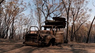 Bandt wants to 'play politics with the bushfires'
