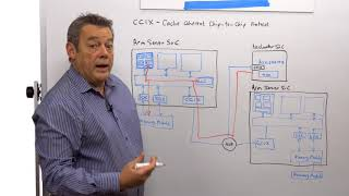 Verification Challenges for SoCs Integrating CCIX Interface IP