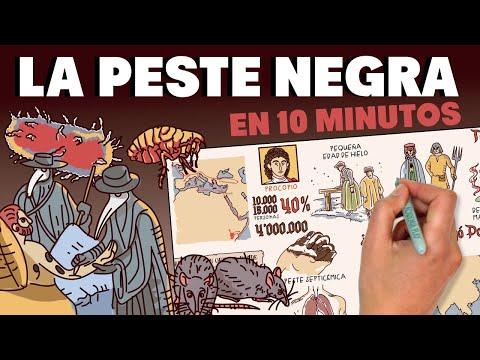 La Peste Negra en 10 minutos