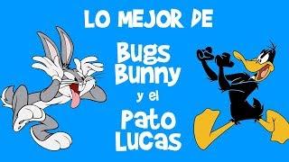 LO MEJOR DE BUGS BUNNY y EL PATO LUCAS | Lo Mejor de Looney Tunes Dibujos Animados Clásicos de Ayer