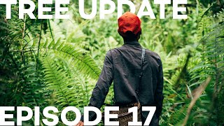 Tree Update Episode 17