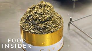 Inside Europe's Biggest Caviar Farm