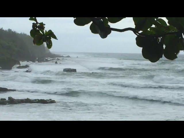 米克拉颱風上午生成 海陸警報齊發