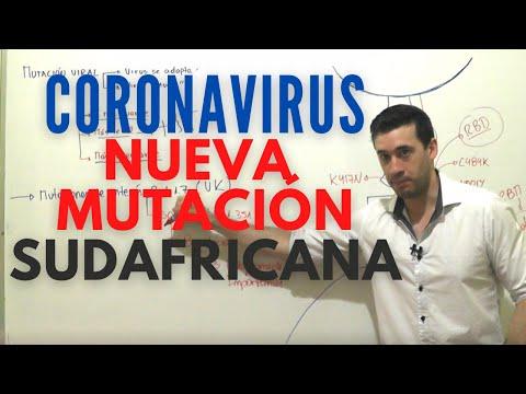 COVID 19 | NUEVA CEPA SUDAFRICA | RESUMEN MUTACION