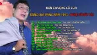 Bong lua vang 1993 - Duc Tai