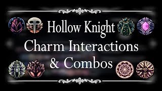 Hollow Knight - Charm Interactions and Combos