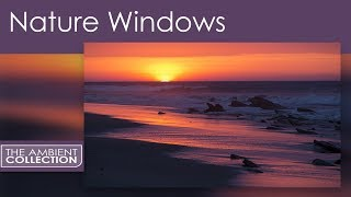 Nature Windows Video - Relaxing Video For Waiting Rooms