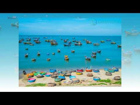 Vietnam e visa official site