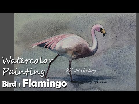 Watercolor Painting Bird : Flamingo | step by step