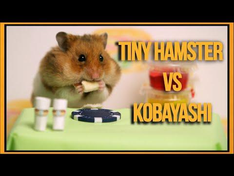 Необичен натпревар во јадење: Кобајаши против Хрчакот
