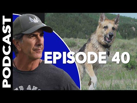 TriPawds are 3 Legged Dogs - Founder Jim Nelson - Podcast Episode 40 - Robert Cabral