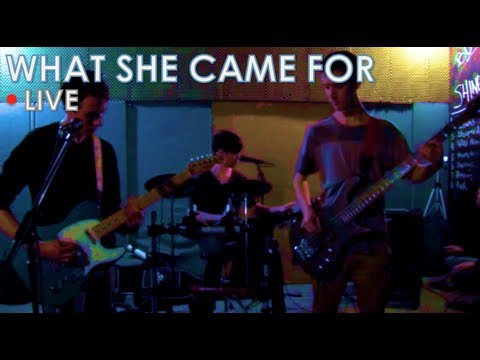 Franz Ferdinand - What She Came For: Band Cover