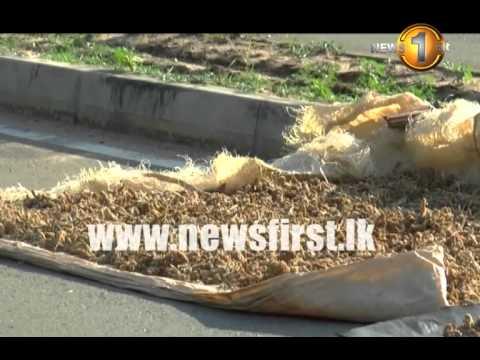 Sooriyawewa Cricket Stadium Entrance Used For 'Crop Drying' [VIDEO]