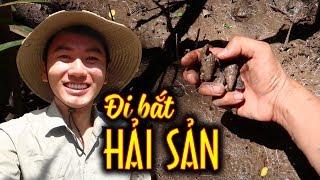 BẮT HẢI SẢN ở rừng bần lớn nhất Việt Nam  Món ăn đặc sản Miền Tây