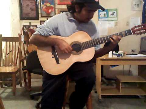la pantera rosa en guitarra (RICARDO CASTILLO)