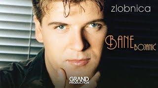 Bane Bojanic - Ova pesma je moj oprostaj - (Audio 1999)