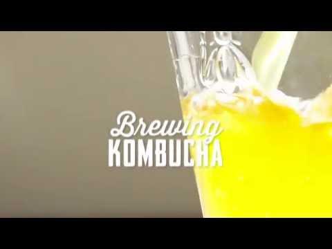 FOOD TIPS: Brewing Kombucha