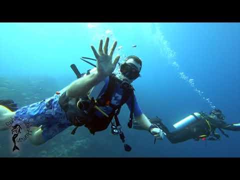A week in Palau - Fantastic diving…