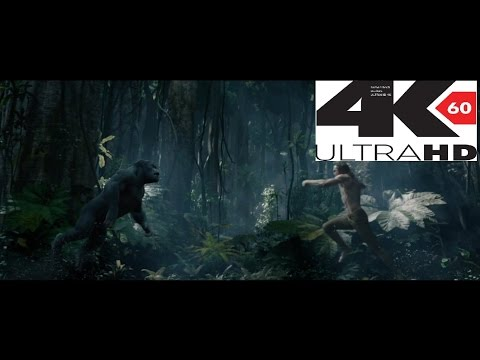 The Legend of Tarzan Trailer in 3D 2016