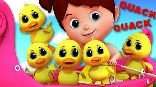 Duck Song   Junior Squad   Kindergarten Nursery Rhymes For Kids