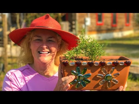 DIY Herb Garden In A Decorated Flower Pot
