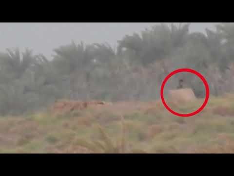 القوات المشتركة تحبط محاولة حوثية لاستحداث مواقع جديدة في الجاح بالحديدة