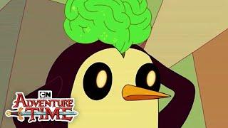 The Real Gunter I Adventure Time I Cartoon Network