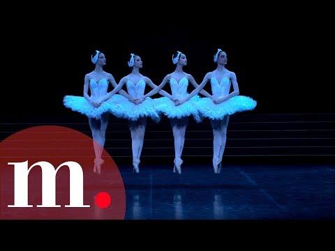 Swan Lake, Tchaikovsky - Dance of the Little Swans