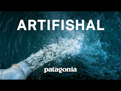 Artifishal, The Fight to Save Wild Salmon