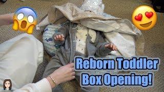 Reborn Toddler Boy Box Opening! AMAZING Christmas Gift From Mia Maria's Nursery | Kelli Maple