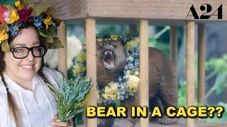 A24 & The Midsommar Bear In A Cage Drama