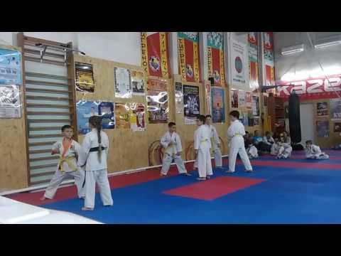 Аттестационный экзамен 29.05.2016 г. по каратэ в клубе Тигренок ч 10