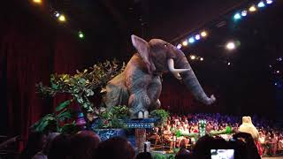 Disney's Festival of the Lion King FULL SHOW Animal Kingdom Disney World HD 2019
