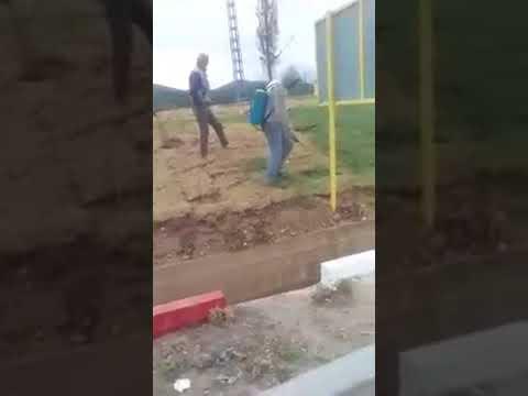 فضيحة تهز الجزائر : ذهن العشب الميت باللون الأخضر لاستقبال وزير الداخلية