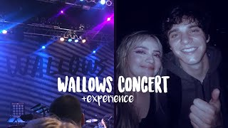 wallows nothing happens concert dallas + experience