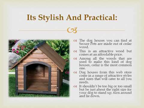 Dog House Air Conditioner And Heater – the functional insight!