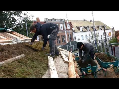 Torvtaksläggning på Kulturen i Lund