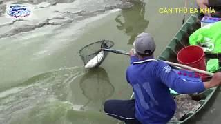 kích Thích Cực Độ Quá! Chích Điện Bắt Cá Như Thế này Mới Sướng Tê Người