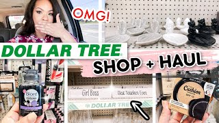 DOLLAR TREE HAUL + SHOP WITH ME! What's New At Our Favorite Dollar Store?!?