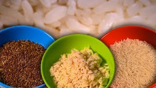 Is Rice Actually Dangerous for You? | Earth Lab