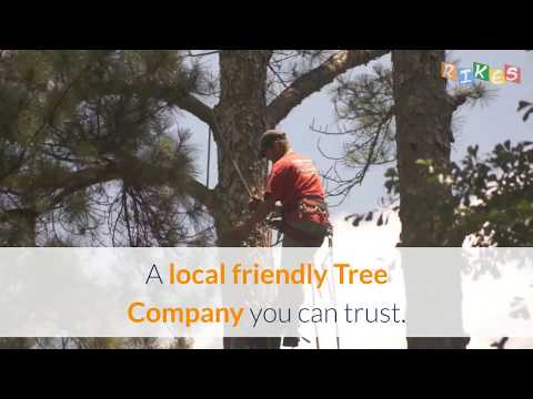 Charlotte Tree Works