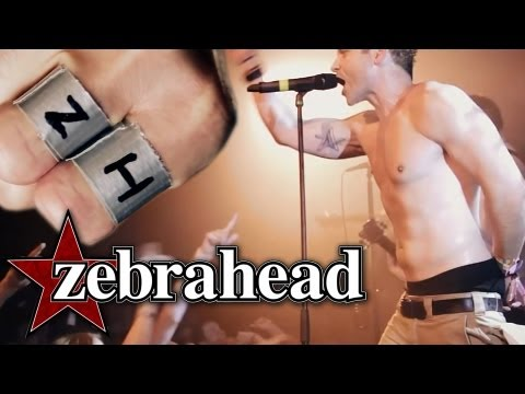 Zebrahead - I\'m Just Here For The Free Beer